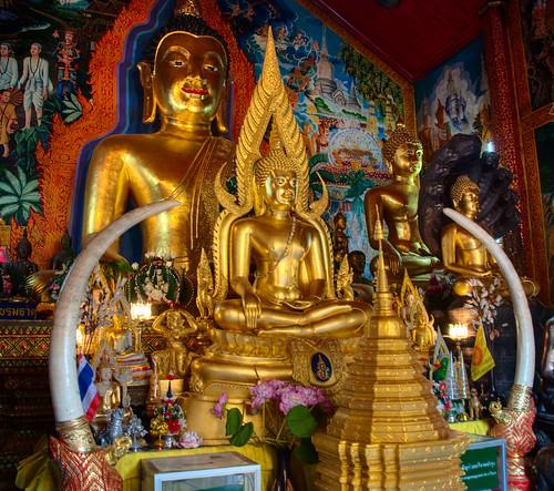 Chiang Mai 25