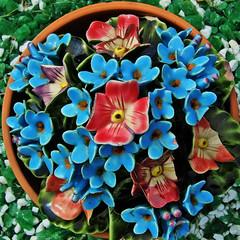 china flowers (Leo Reynolds) Tags: flower cemetery iso100 f30 finepix squaredcircle fujifilm f71 hpexif 0002sec sqset042 xleol30x xxx2009xxx