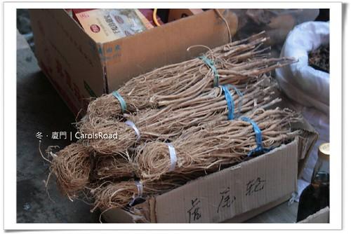 20090208_Xiamen_286