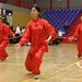 Dutch Tai Chi Festival-4