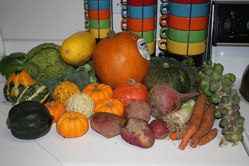 Farm Share Haul, 11/25/09