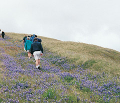 Post Ranch Inn : Activities & Amenities : Hiking (post-ranch-inn) Tags: ranch big inn exercise hiking places sur hikers fitness stay california resort travel best big post top where california inn four stars activities outdoor vacation romantic hotels sur luxury hikes resorts stay accommodations hiking lodgings getaways