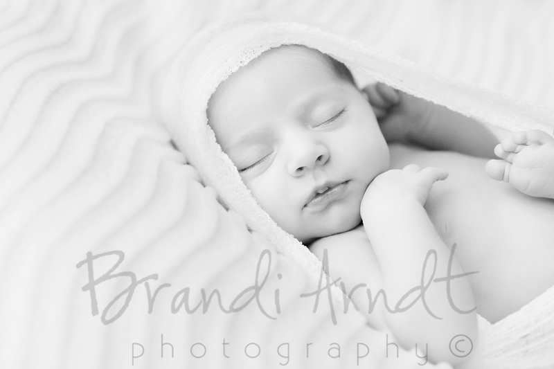 Edmonton Newborn Photographer ©Brandi Arndt Photography