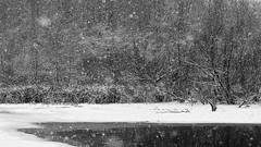 Let it Snow (Stuart Sipahigil) Tags: trees winter lake snow water nikon indiana d700 summitlakestatepark indurotripod