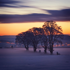 9 below (Stuart Stevenson) Tags: longexposure trees winter sky mist snow cold ice freezingfog lights scotland movement solitude twinkle hills toasty cloudcover snowfields verycold gloaming clydevalley veryverycold treesinsilhouette lotsoflayers 1200ftup lookingdownthevalley