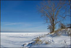 Sunny Winter Day Along Lake Michigan