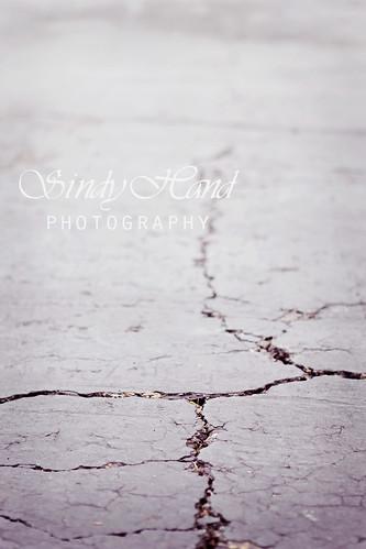 photowalk 2/52