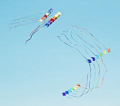 siempre hay que seguir, aunque slo sea por curiosidad (quino para los amigos) Tags: light sky kite color colour luz fly cielo reflejo volar barrilete barriletes tiritas