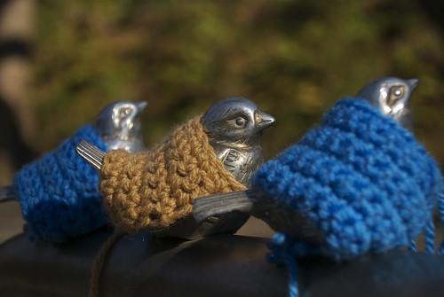 防寒具を着せてもらったスズメたち