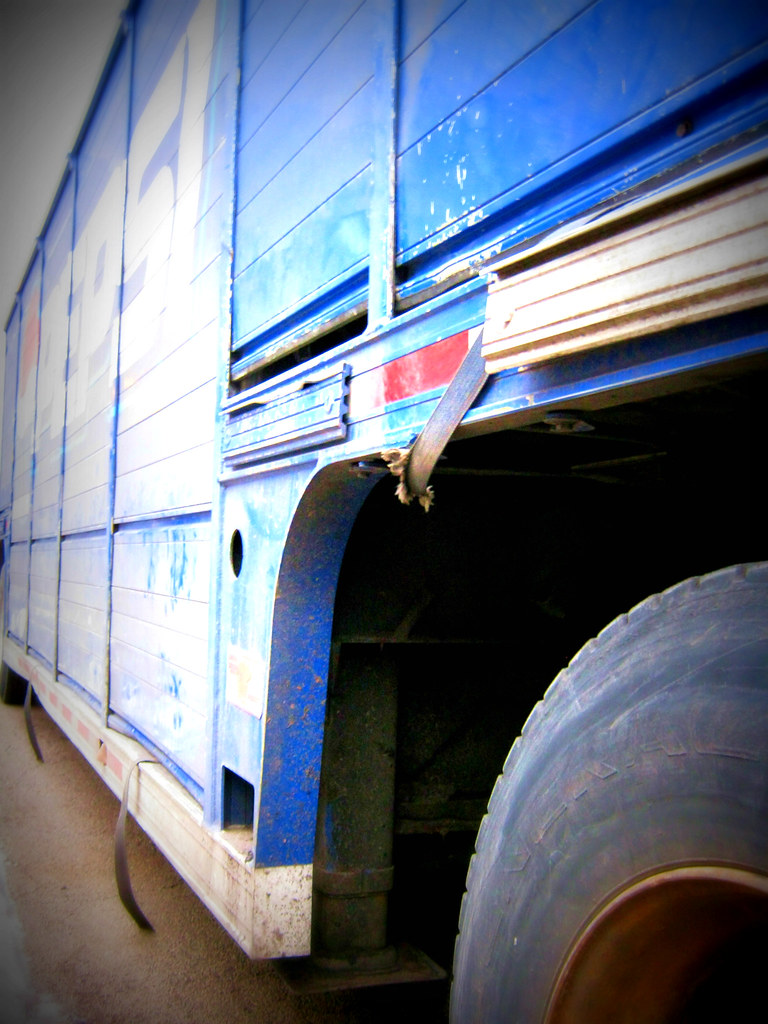 Motor Truck Cargo