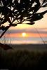 Whangamata BP 187 (Canterbury Student Life) Tags: studentlife beachproject