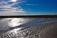 Low Tide (Initial Milberts) Tags: blue sky water clouds lens landscape tyson jennifer tide low flare marsh milbert