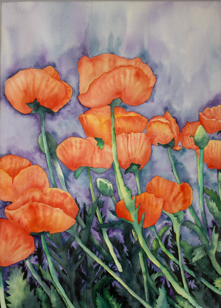 sue's poppies
