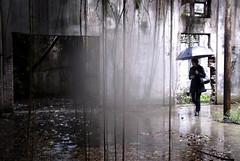 Invasão/ Invasion (Lucille Kanzawa) Tags: brazil abandoned rain brasil umbrella sãopaulo chuva guardachuva vilamariazélia lucillekanzawa