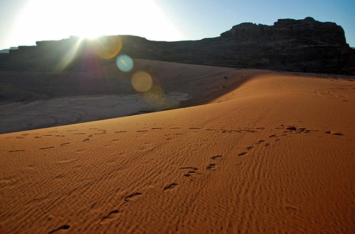 a long, sinuous curve, wadi rum