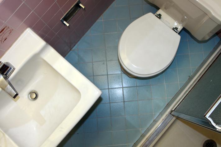 032610_toiletBrush