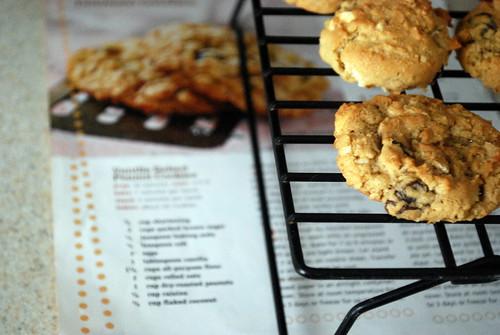 Vanilla Salted Peanut Cookies