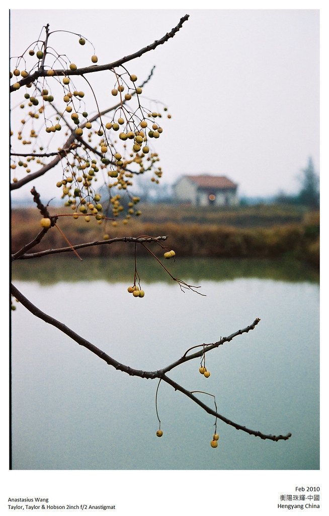 2010-CNY-029