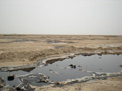 Hydrocarbon contamination on Fao Peninsula, Iraq