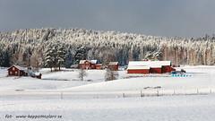 20170222100869 (koppomcolors) Tags: koppomcolors winter vinter värmland varmland sweden scandinavia sverige