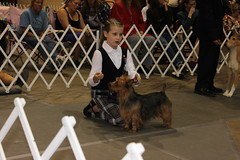 Dog show Rapid City Champion Dakota