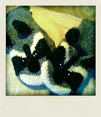 Raccoon mittens