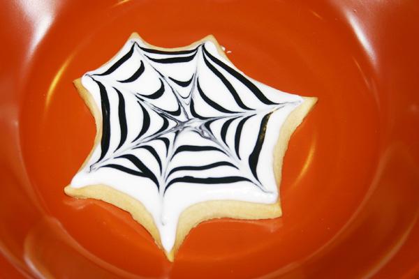 webs 5