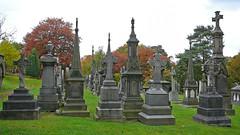 Utley Cemetery 1