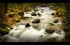 Rapids @ Roaring Forks Trail (krazyvshank) Tags: mountains nature water river flow nikon stream long exposure tn tennessee fork falls rapids trail smokey motor 1855mm gatlinburg nikkor smokies roaring d300 platinumheartaward