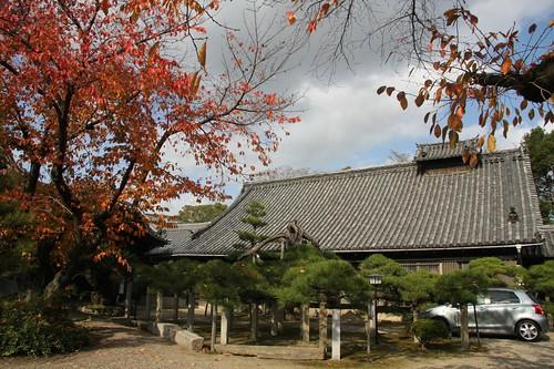 来迎寺の秋