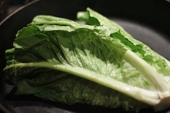 lettuce in a pan