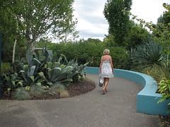 Italian Renaissance Garden 1