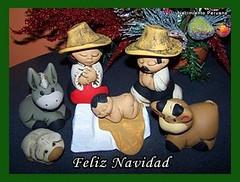 Nacimiento Characato - Arequipa Perú