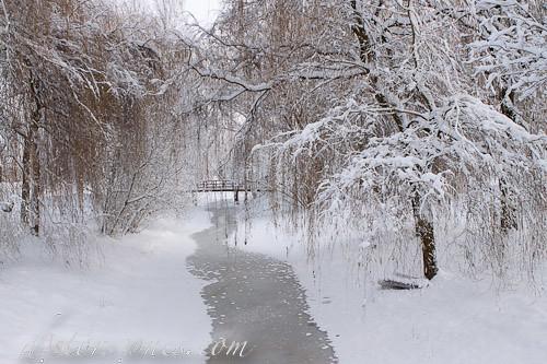 Postal invernal en Utrecht