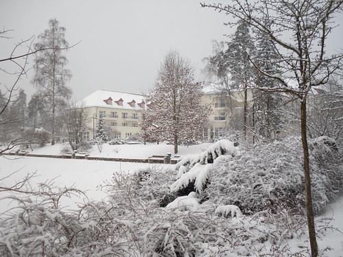 Bad Klosterlausnitz (33)