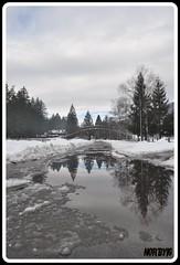 Rifletti (Lifeistoomuch!) Tags: bridge trees sky mountain snow reflection tree ice wet alberi nikon ponte cielo neve montagna ghiaccio riflesso d90 nikond90