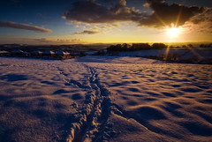 All The Way Home (andy_AHG) Tags: sunset snow weather rural walking landscape outdoors evening lowlight hiking scenic fields pennines rambling barnsley hedges southyorkshire britishcountryside nikond200 dovevalley yorkshirelandscapes worsboroughcommon