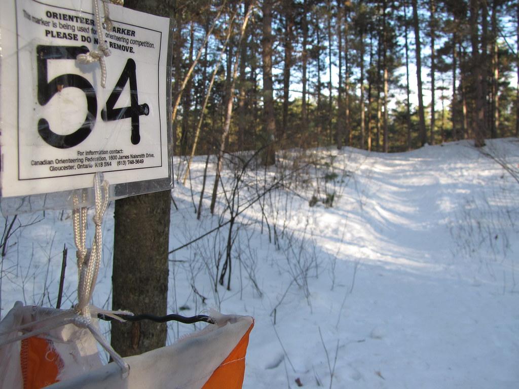 Orienteering Marker #54