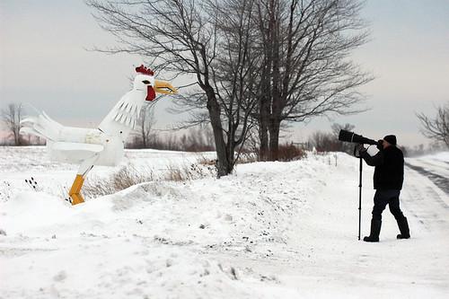 Earl Reinink shooting a big Canadian chicken
