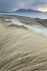 Ceapabhal from the Luskentyre Dunes (David Kendal) Tags: motion dunes westernisles outerhebrides dunegrass marram luskentyre isleofharris scottishcoast losgaintir ceapabhal soundoftaransay caolastharasaigh bruaicheanlosgaintir