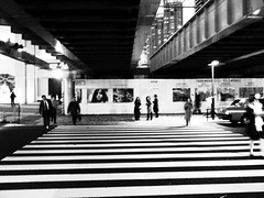 197/365: Zebra (joyjwaller) Tags: people blackandwhite japan underpass lights tokyo commute zebra pedestrians intersection rushhour crosswalk hamamatsucho project365 lostinourovercoatswaitingforthesunset heytokyoyouknowiloveyouright
