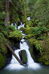 Cataract Falls II (mwdiaz) Tags: sanfrancisco green canon waterfall smooth hike falls waterfalls cascades mttam tamalpais lush silky cataract cataractfalls 24105mm 5dmkii