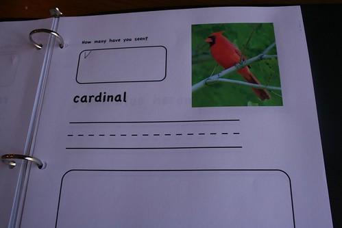 Cardinal page