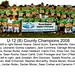 2008 - U12 B County Champions
