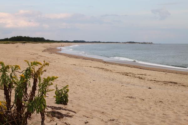 Beach-002