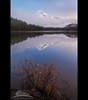 Trillium Lake - Fall (Jesse Estes) Tags: autumn fog sunrise fallcolor mounthood trilliumlake 5d2 jesseestesphotography