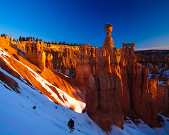 Thor's Hammer, Bryce Canyon National Park, Utah, USA (Xindaan) Tags: morning blue schnee winter light sky orange usa white snow plant tree nature colors rock sunrise season landscape geotagged dawn licht utah us ut flora nikon sandstone scenery colours unitedstates tripod jahreszeit natur pflanze amphitheatre himmel hoodoo dmmerung blau nikkor brycecanyon 16mm landschaft stein sonnenaufgang f11 morgen sandstein baum gitzo farben 2010 reallyrightstuff thorshammer d300 rrs brycecanyonnationalpark gestein sidelight