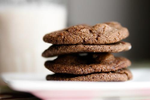 Vegan Chocolate Gingerbread Cookies