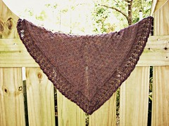 Went Berrying Shawl