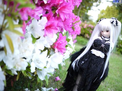 Outdoor Photoshoot @ Rinkou/Zouno-hana Park by Haku1923